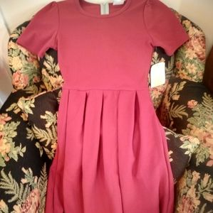 NWT LuLaRoe Amelia Dress XXS